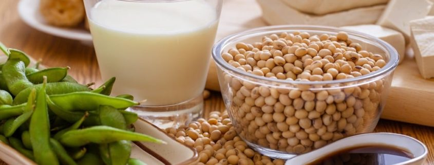 different-kinds-of-soya-products-for-a-soul-2-soul-healing
