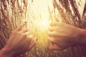 Somatic Therapy at Soul 2 Soul Healing brings you through the field of darkness